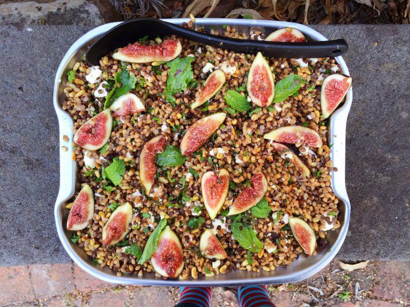Farro and lentil salad